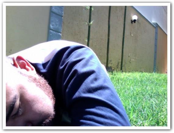 Un día soleado en el pasto